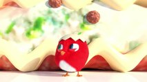 CucKoo Cartoon  Cuckoo Chicken 2020 - Part 33 Drôle de bande dessinée pour les enfants 2020