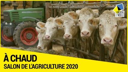 Salon de l'agriculture 2020 : les producteurs de Meurthe-et-Moselle à l'honneur