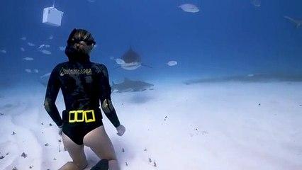 La vidéo de cette femme qui apprivoise un requin est vraiment hypnotisante.. Mais beaucoup ne verront pas le requin