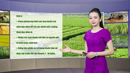 Thời tiết nông vụ -26/02/2020