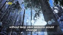 Why Leap Year Is Important