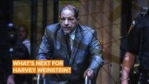Jails, Courtrooms and Hospitals: Harvey Weinstein's grim future