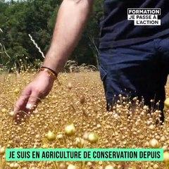 Mon histoire de formation | Hervé se forme depuis plusieurs années pour améliorer son système de conservation des sols