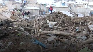 تركيا: كلب يساعد رجال الطوارئ في إنقاذ ضحايا الزلزال