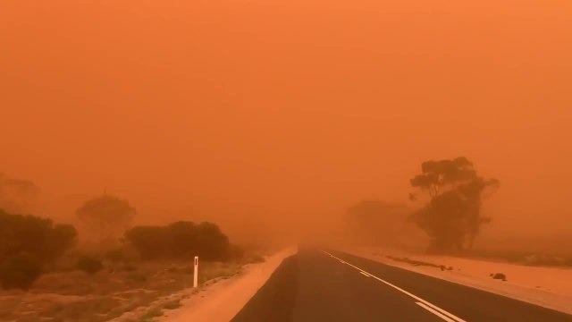 Vehicle Drives Through Dust Storm