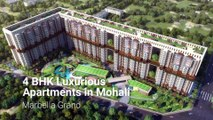 Marbella Grand ,  3BHK & 4BHK Ultra Luxurious Property For Sale in Mohali ,  1800212828282