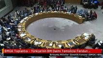 BMGK Toplantısı - Türkiye'nin BM Daimi Temsilcisi Feridun Sinirlioğlu (1) -