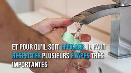Comment bien se laver les mains, selon l'OMS