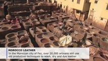 Leather tanneries of Fez stand the test of time