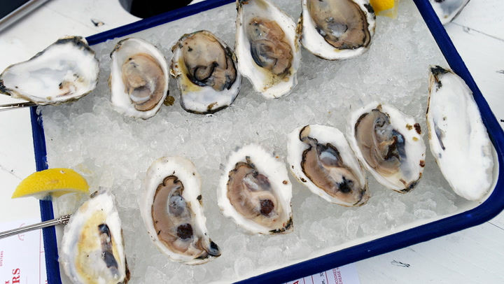 How oysters are farmed in Scotland's lochs