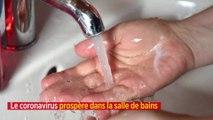 Le coronavirus prospère dans la salle de bains
