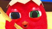 Cuckoo 2020 - Compilation Crazy CucKoo #39 - New Cartoons for kids