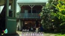 恋愛映画フル2020   青夏 きみに恋した30日   かわいい映画フル Ep1