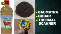 Gaumutra and Gobar: Ministers' Bizarre Solutions For Coronavirus