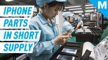 Apple is partially to blame for increasing shortage of iPhone replacements