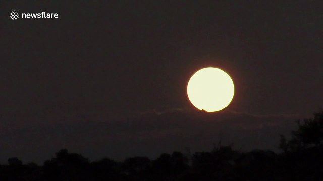Spectacular Super Worm Moon rises over South African savanna