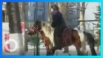 騎馬上街買菜 黑龍江男子被交警勸返