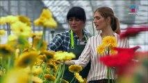 Reina de las flores Capitulo 13 Completo Reina de las flores Capitulo 13 Completo Reina de las flores Capitulo 13 Completo
