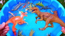Dinosaurs for kids, Dinosaurs Find Baby Mom, Jurassic World Dinosaur Toys Kids Video