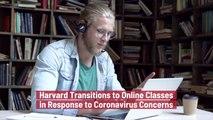 Harvard Focuses Online