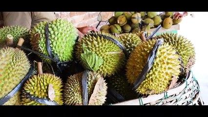 Durian Merica dari Trawas, Si Mungil dengan Rasa Manis nan Menggigit