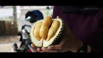 Jawa Pos Belah Durian Episode 37: Durian Santri Lumajang