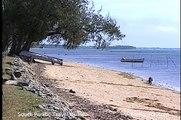 Tonga History, Economics, Agriculture, Culture
