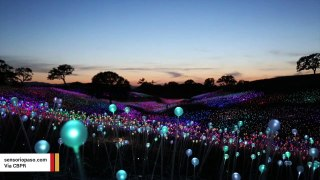 California's Field Of Light Is Possibly The Coolest Spring Attraction
