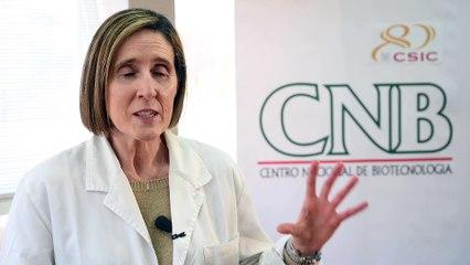 Isabel Sola, codirectora del laboratorio de coronavirus del Centro Nacional de Biotecnología (CNB-CSIC)