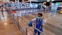 Affamée par le coronavirus, une foule de singes thaïlandais se bat en pleine rue