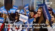 Bernie Sanders supporters rally ahead of Tuesday primaries  AFP