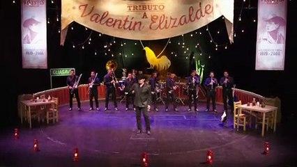 Various Artists - Tributo A Valentín Elizalde