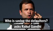Who is saving the defaulters? asks Rahul Gandhi