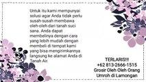 TERLARIS!!! +62 813-2666-1515 | Grosir Oleh Oleh Orang Umroh di Lamongan