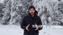 Tess Ledeux : prodige du ski acrobatique