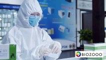 How Biozooo Sars-Cov-2 Covid 19 Antibody Test Kit works