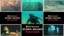 The Best Dive Site Koh Bida Nok & Koh Bida Nai The Southernmost Diving Phi Phi Islands in thailand