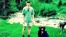 Zuke'S Z-Bone Dental Chew Dog Treats | PuppySimply