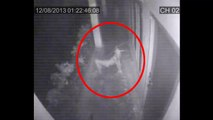 Shocking CCTV Ghost Footage - Real Ghost Caught On CCTV Camera - Scary Videos