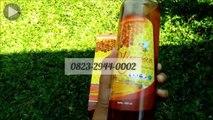SALE% +62 823-2944-0002 | Jual Madu Hutan Asli di Jakarta