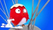 CucKoo Cartoon  Cuckoo Chicken 2020 - Part 16 Drôle de bande dessinée pour les enfants 2020
