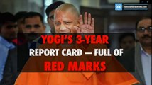 Yogi's 3-year report card — full of red marks