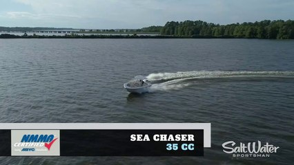 2020 Boat Buyers Guide: Sea Chaser 35 CC