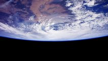 Coronavirus Pandemic Offers A Preview Of Post-Human Earth