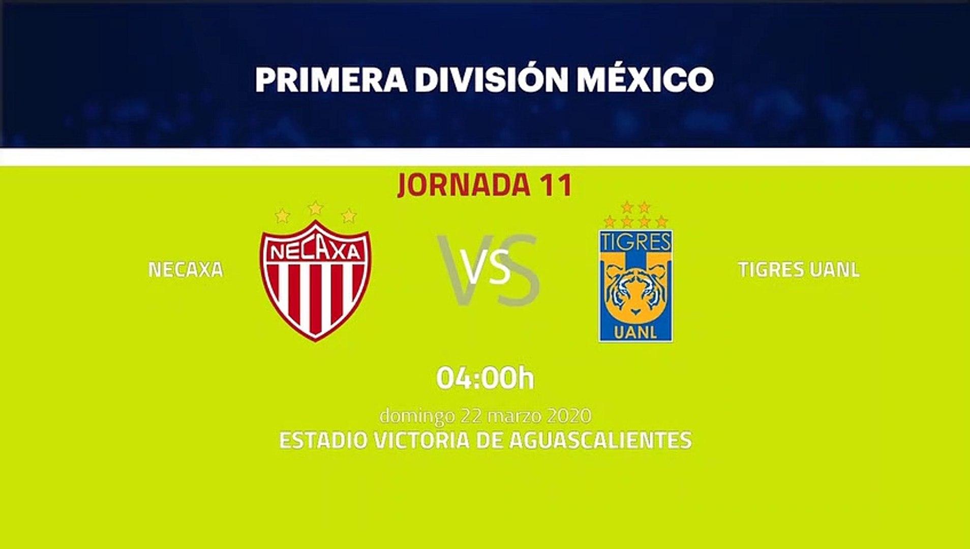 Previa partido entre Necaxa y Tigres UANL Jornada 11 Liga MX - Clausura