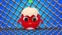✅ Pájaro Cucú #31 | Dibujos Animados en Español | Compilación De Dibujos Animados Infantiles