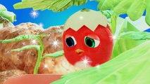 ✅ Pájaro Cucú #26 | Dibujos Animados en Español | Compilación De Dibujos Animados Infantiles