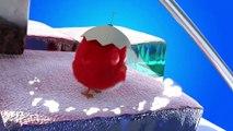 ✅ Pájaro Cucú #22 | Dibujos Animados en Español | Compilación De Dibujos Animados Infantiles