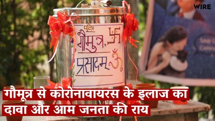 Hindu Mahasabha Proclaims Cow Urine is an Antidote to COVID-19, Public Refuses to Believe