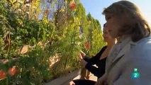 """Las recetas de Julie - 62 """"París y sus jardines"""""""